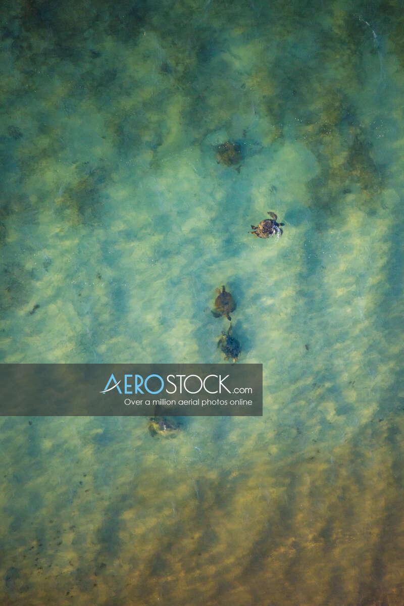 Stock photo of Ningaloo, WA