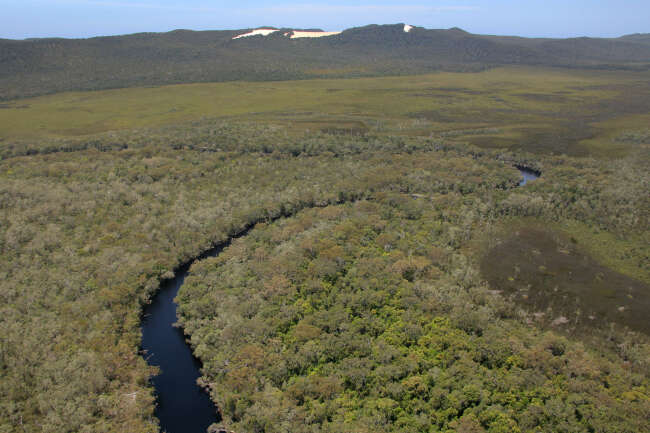 Earths second largest Everglades