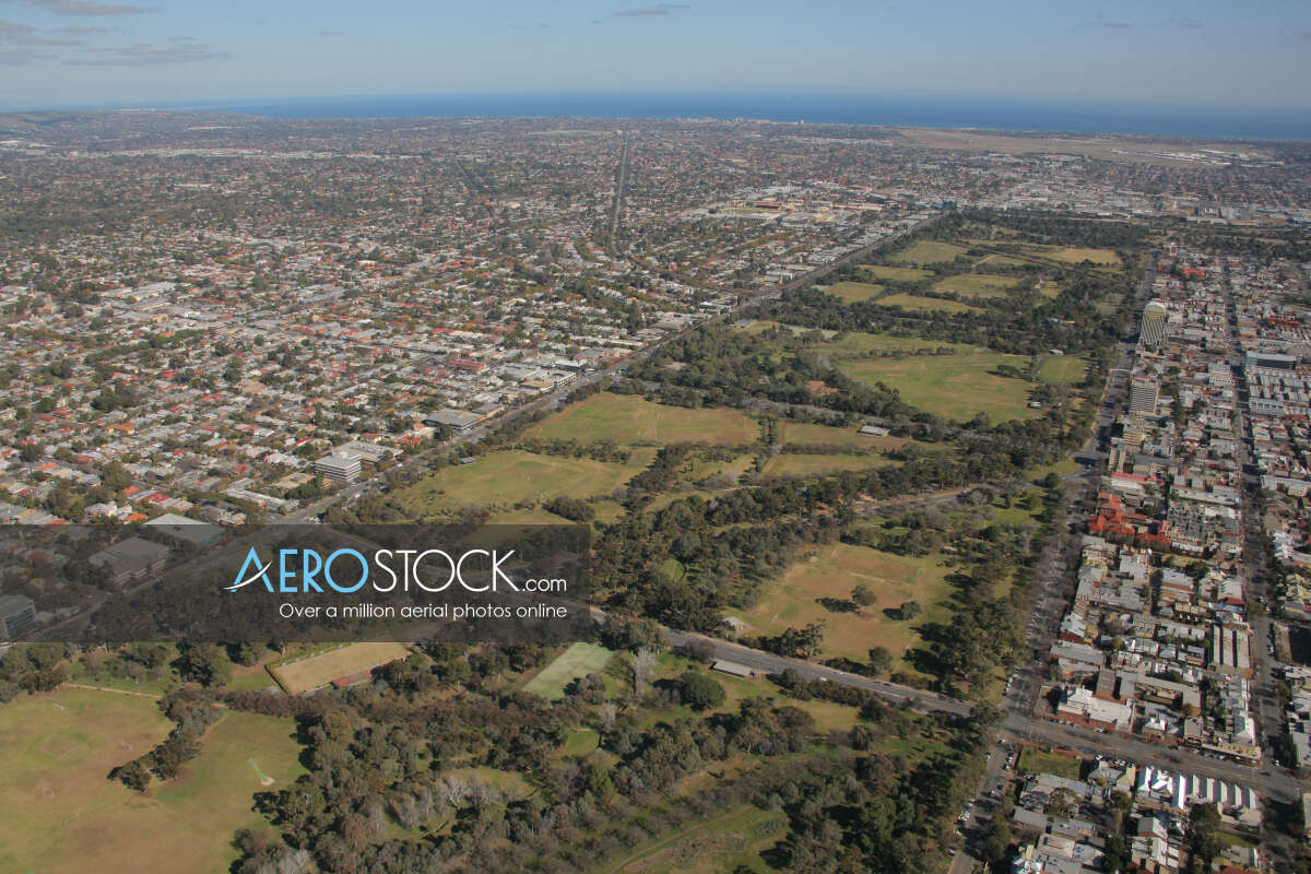 Affordable stock photo of Rose Park in Burnside.