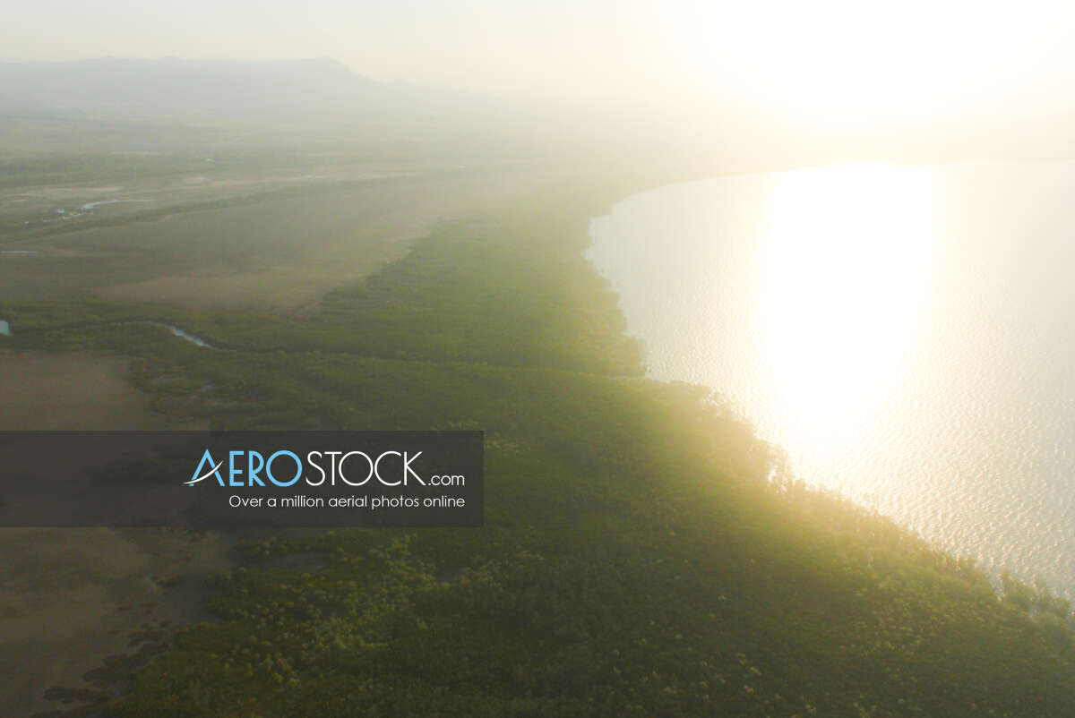 Cost effective stock image of Julago in Townsville.