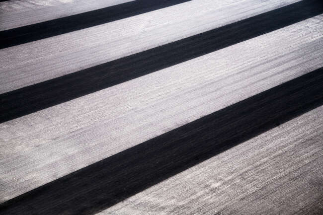 Highway in the Crops