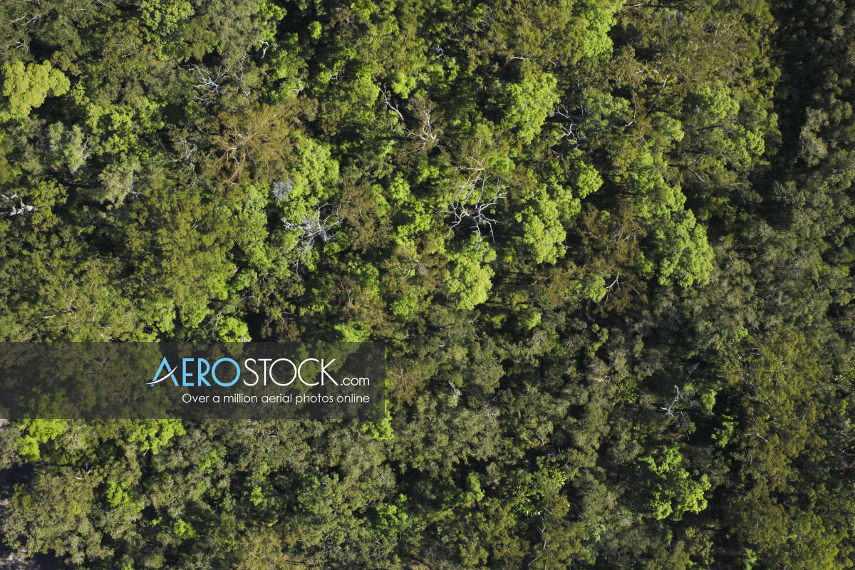 High resolution panoramic aerial photo of Meridan Plains.