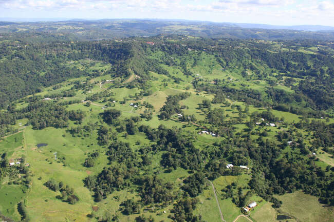Hunchy 4555, West Woombye 4559, Montville 4560