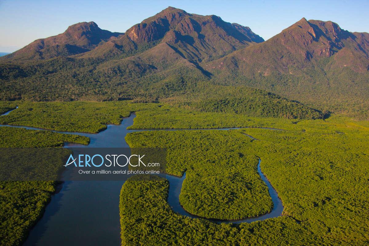 Rungoo in the Cassowary Coast Queensland