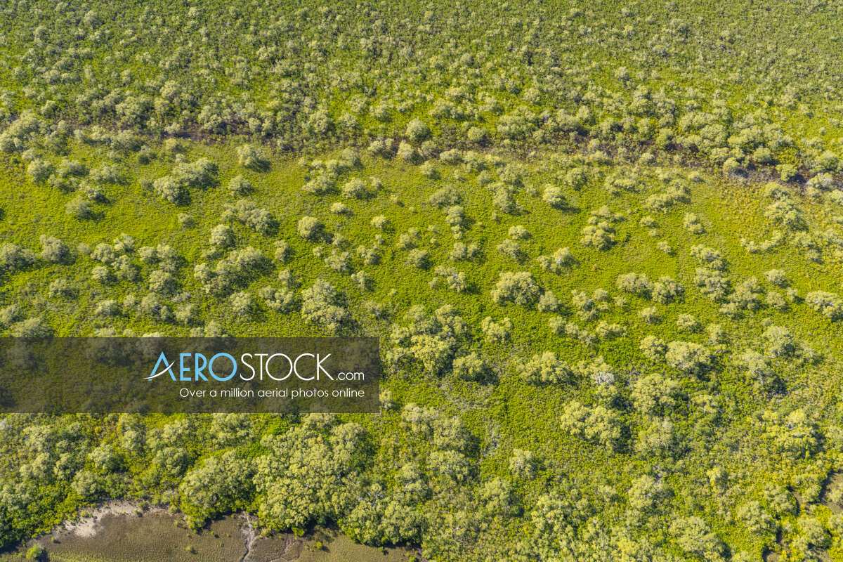 High definition photo of Coochin Creek ready to download