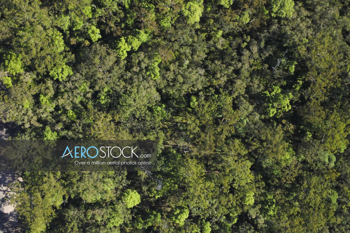 High definition stock image of Meridan Plains, QLD.