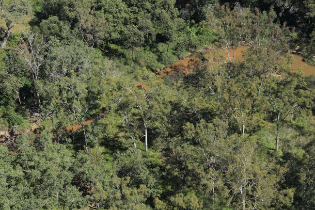 130419 110106 Above Photo 6843