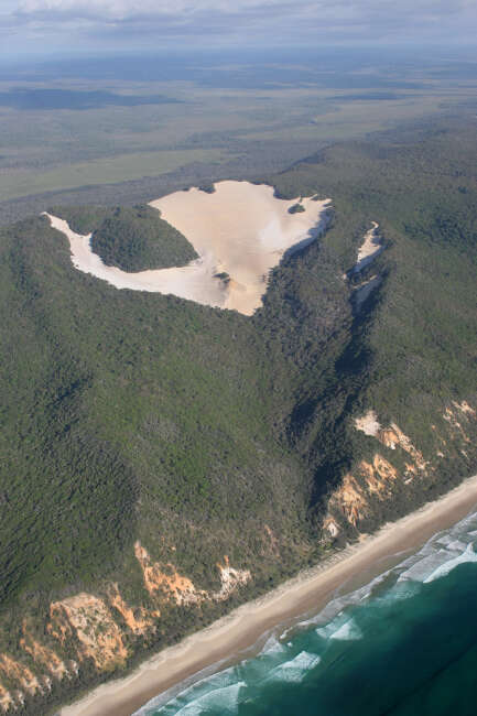 Cooloola Sand Patch