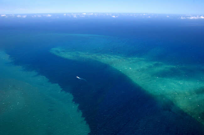 Into the Abyss, Inskip Point 4581