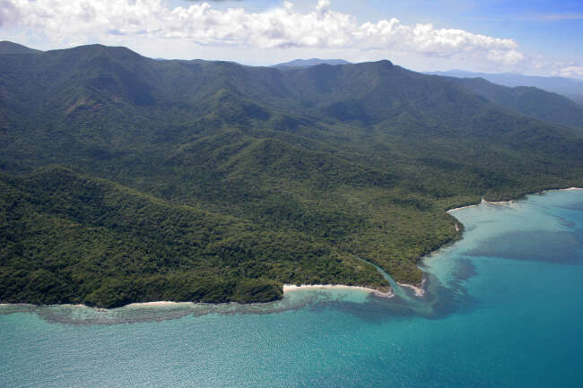 Cape Tribulation 4873