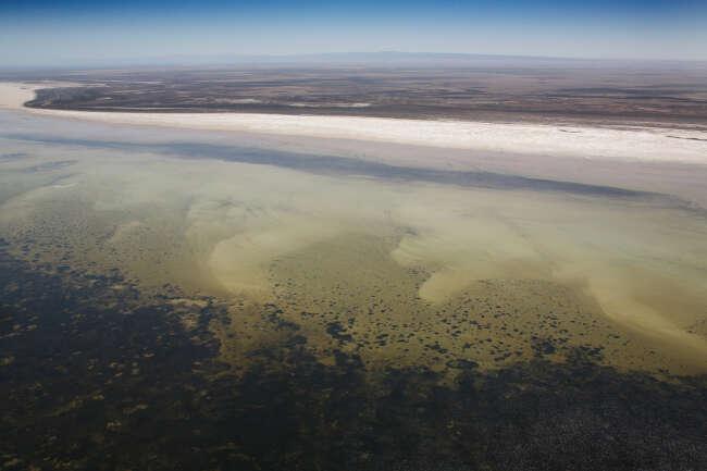 Spencer Gulf