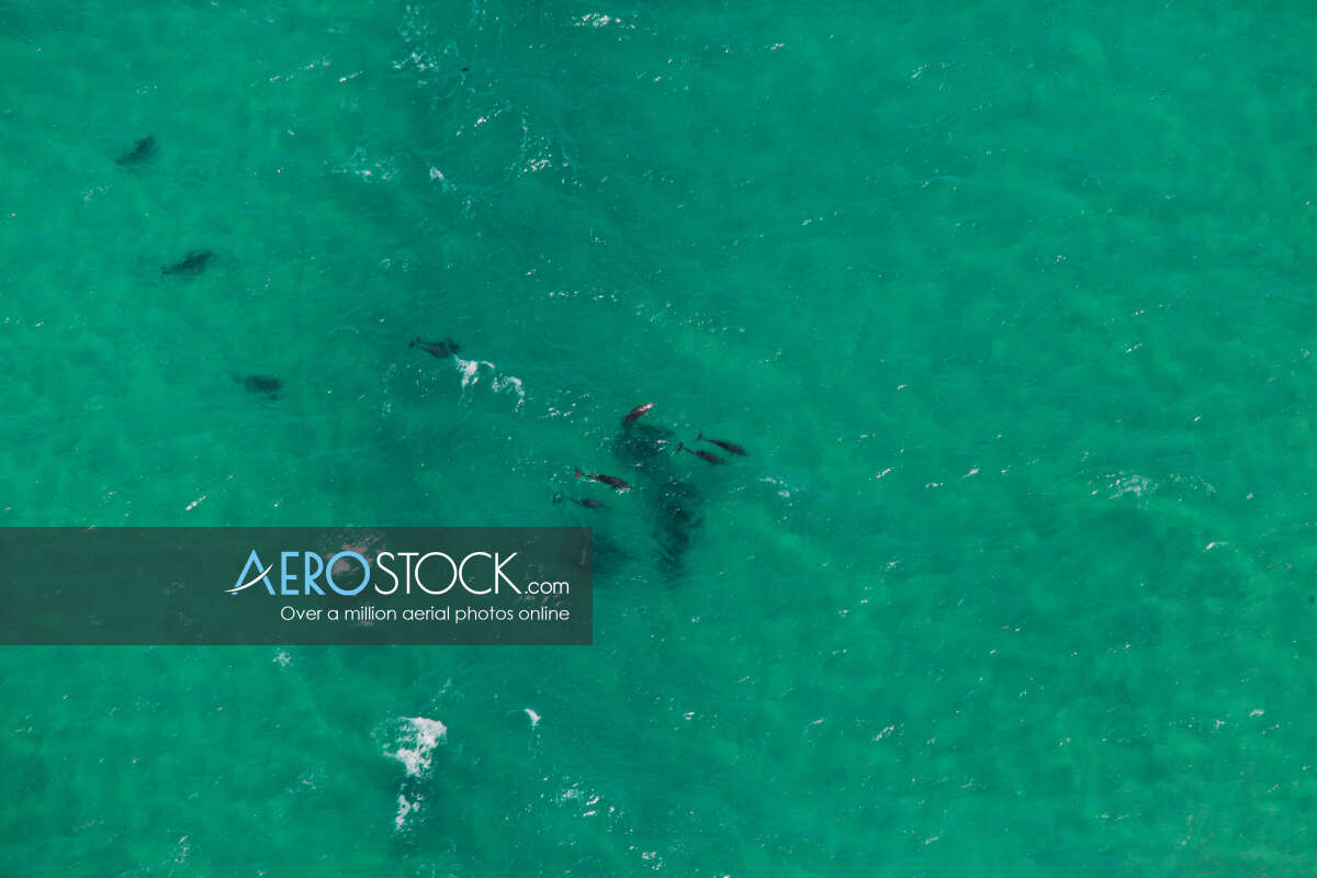 Aerial stock image of Woody Head taken on the November 7th, 2013 11:54