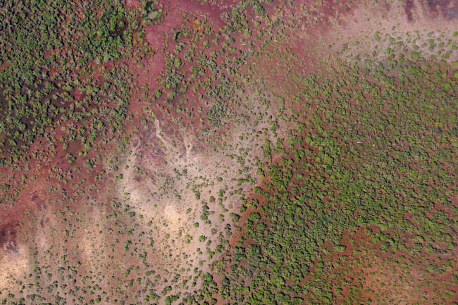 Red Earth's Blood Flow